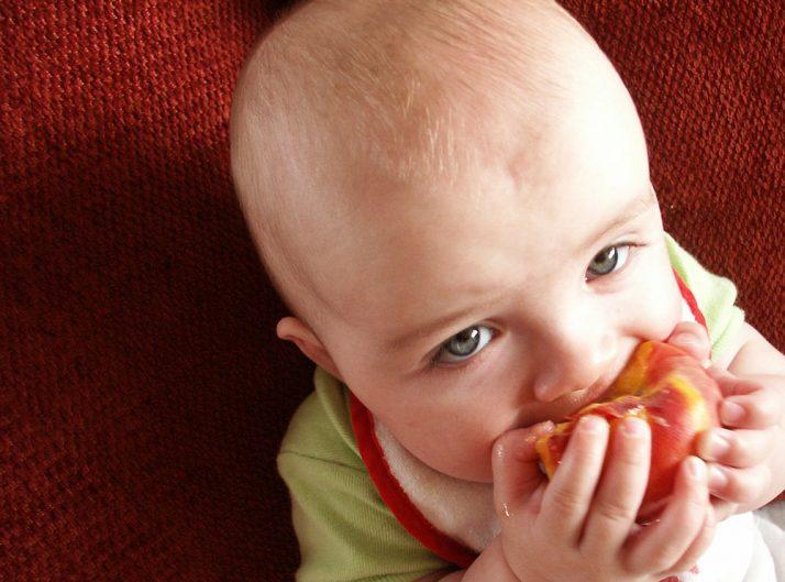 Cuándo introducir alimentos sin triturar en la dieta de nuestros hijos