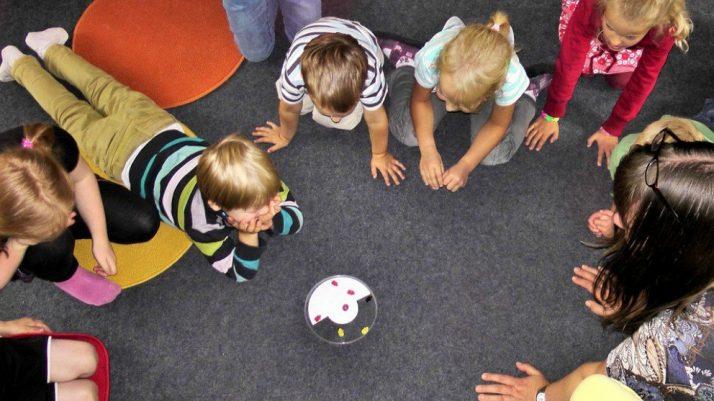 ¿Qué son los juegos de niños dirigidos?